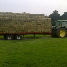 Agricultural Flat / Bale trailers / BC/25-10ton