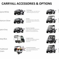 CARRYALL OPTIONS